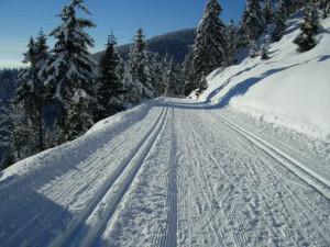 XC-skiing-generic